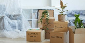 boxes-in-the-apartment-MKL9887